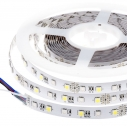Tira LED EPISTAR SMD5050, RGB+WW, DC24V, 5m (60Led/m) - IP20,